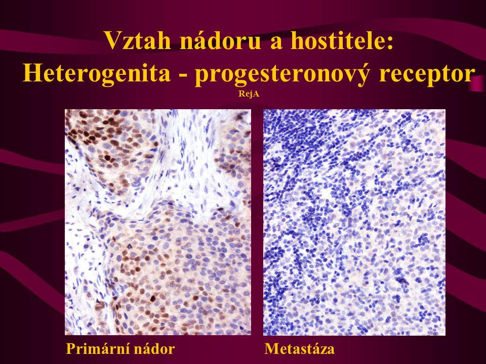 Vztah nádoru a hostitele: Heterogenita - progesteronový receptor RejA