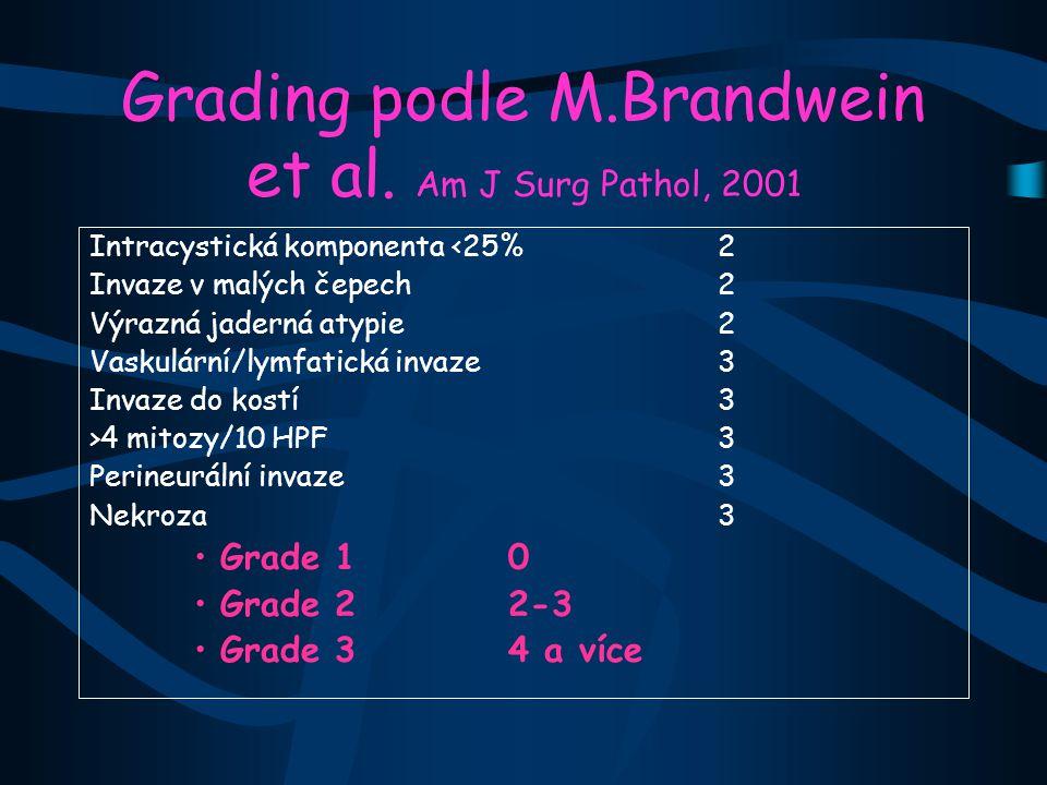 Grading podle M.Brandwein et al. Am J Surg Pathol, 2001
