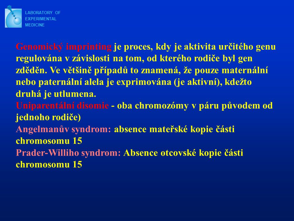 Angelmanův syndrom: absence mateřské kopie části chromosomu 15