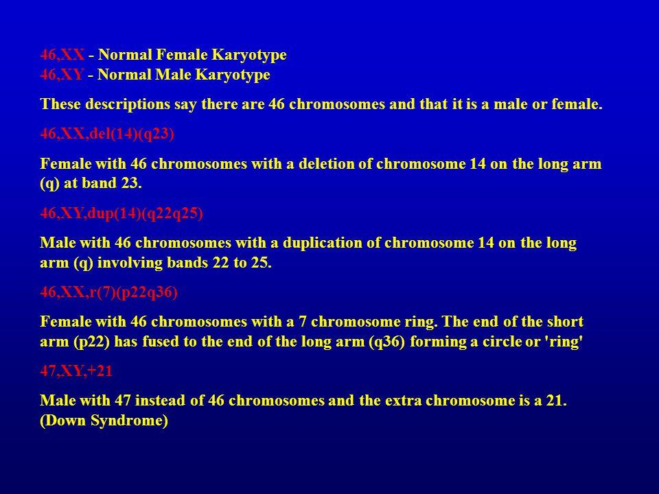 46,XX - Normal Female Karyotype 46,XY - Normal Male Karyotype