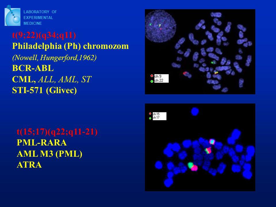 t(15;17)(q22;q11-21) PML-RARA AML M3 (PML) ATRA