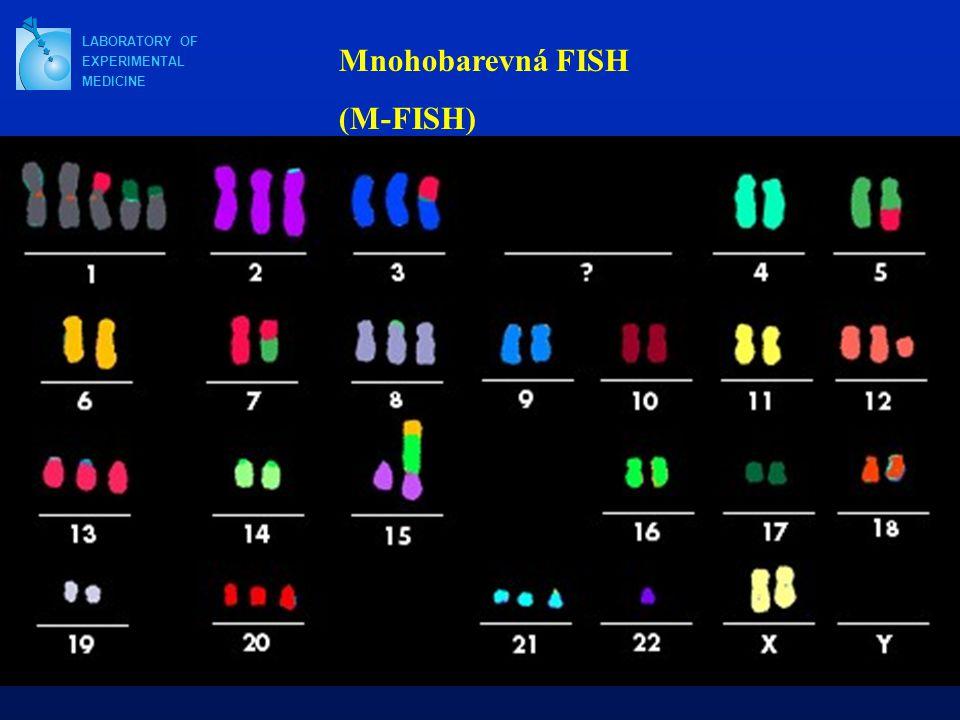 LABORATORY OF EXPERIMENTAL MEDICINE Mnohobarevná FISH (M-FISH)