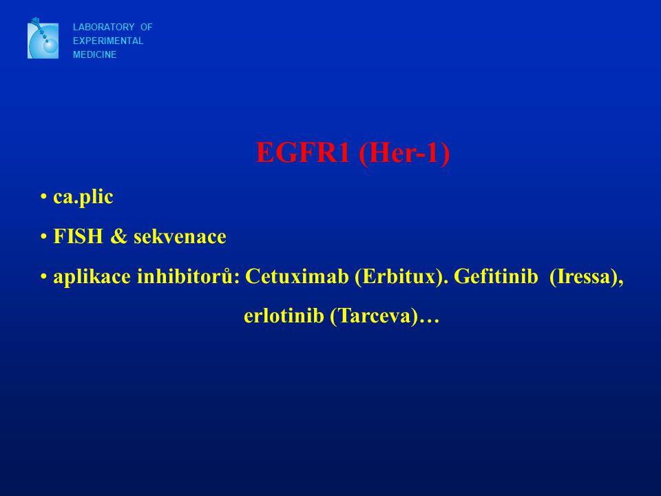 EGFR1 (Her-1) ca.plic FISH & sekvenace