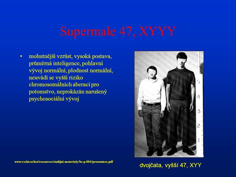 Supermale 47, XYYY