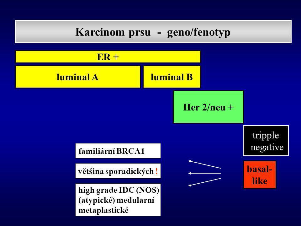 Karcinom prsu - geno/fenotyp