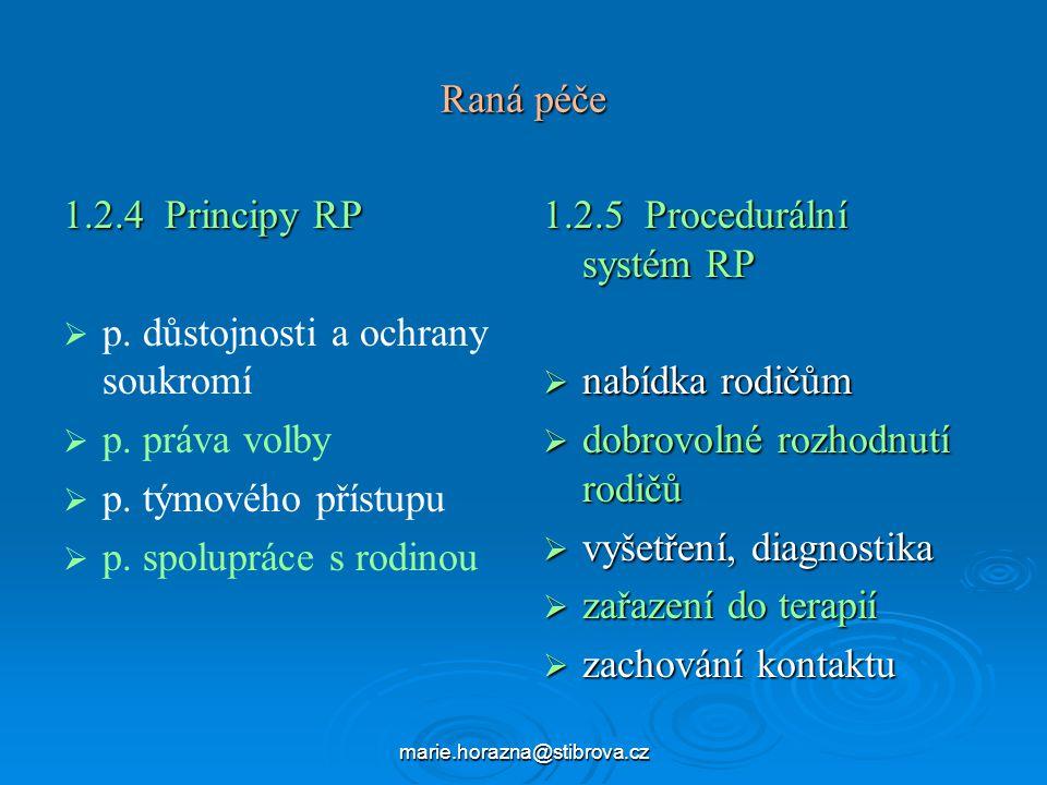 p. důstojnosti a ochrany soukromí p. práva volby p. týmového přístupu