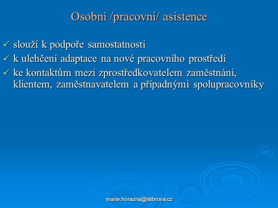 Osobní /pracovní/ asistence