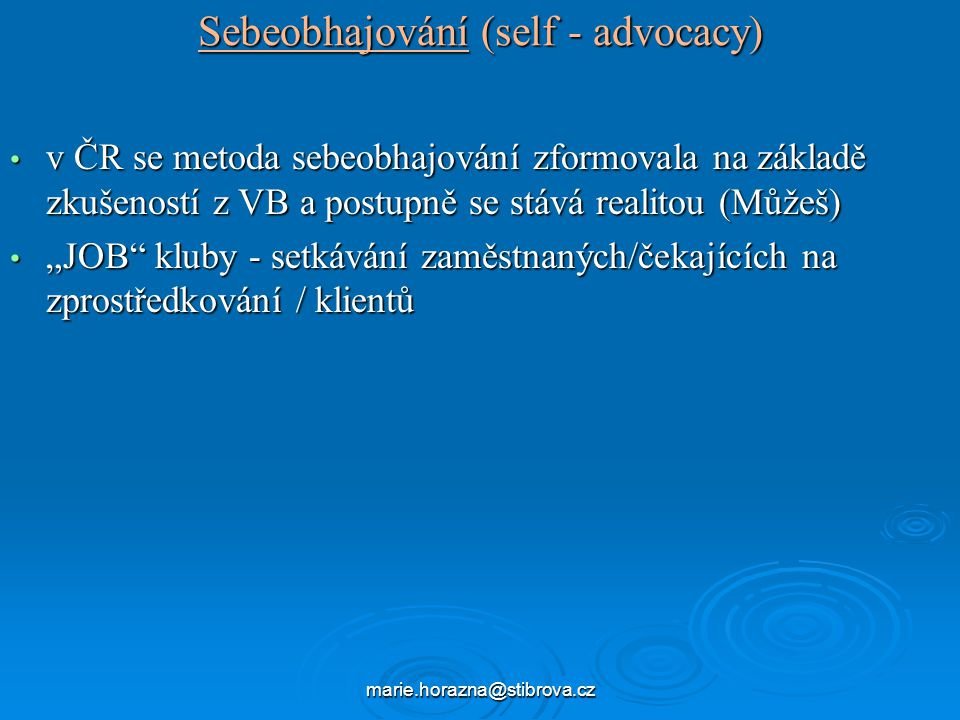 Sebeobhajování (self - advocacy)