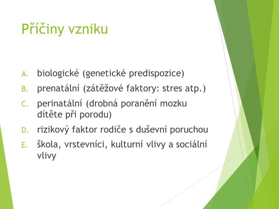 Příčiny vzniku biologické (genetické predispozice)