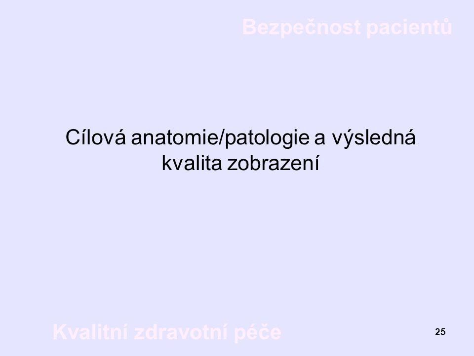 Cílová anatomie/patologie a výsledná kvalita zobrazení