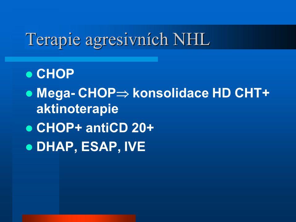 Terapie agresivních NHL