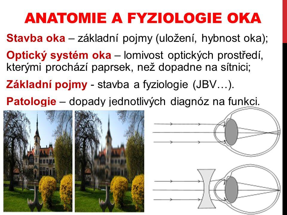 Anatomie a fyziologie oka