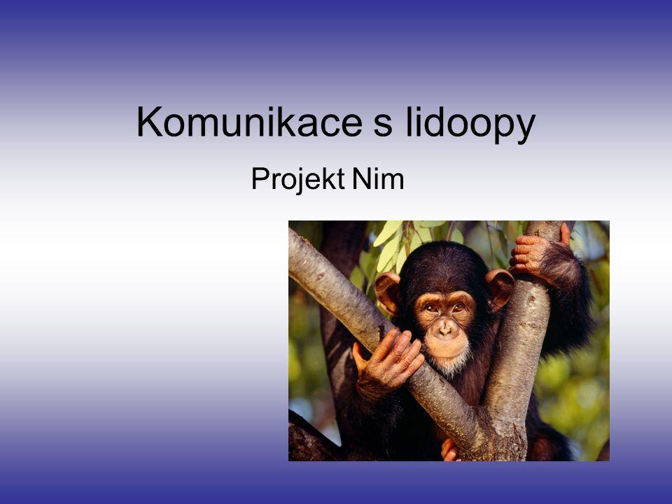 Komunikace s lidoopy Projekt Nim