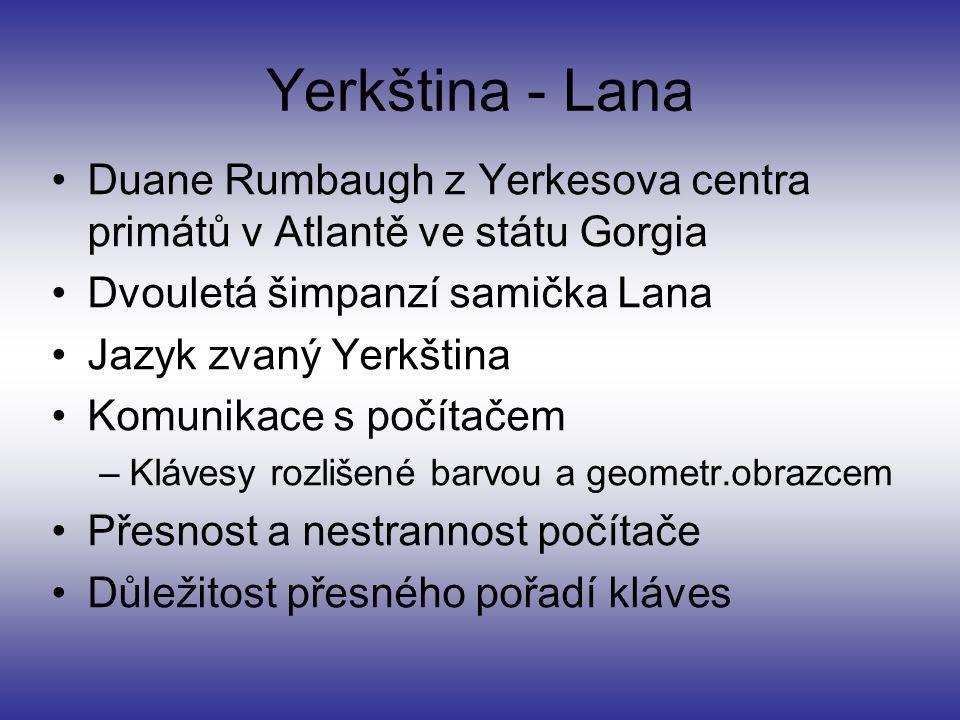 Yerkština - Lana Duane Rumbaugh z Yerkesova centra primátů v Atlantě ve státu Gorgia. Dvouletá šimpanzí samička Lana.