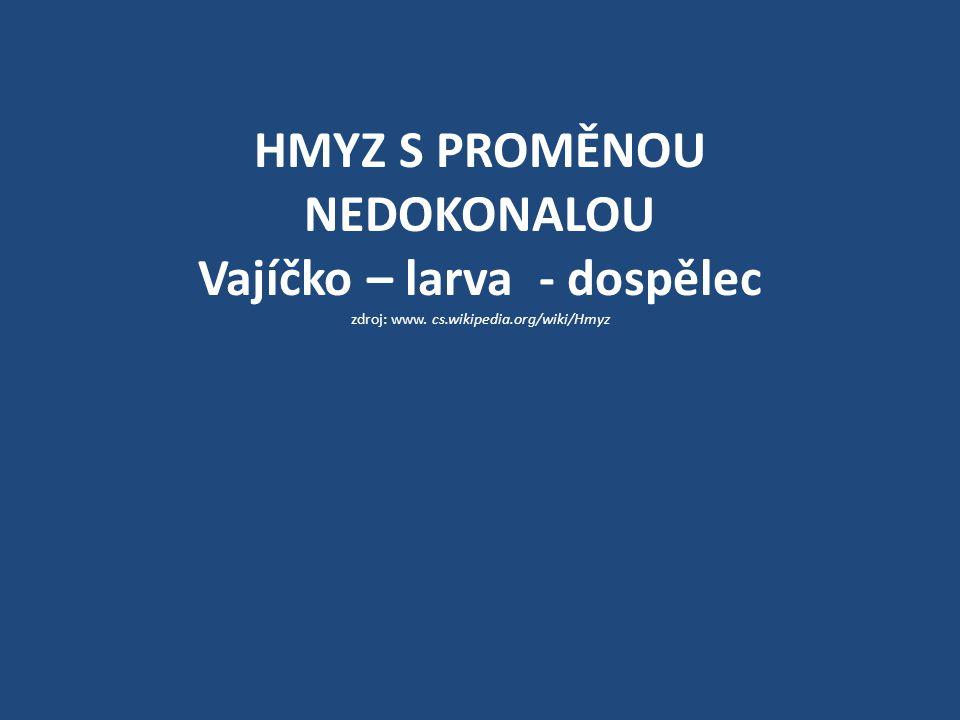 HMYZ S PROMĚNOU NEDOKONALOU Vajíčko – larva - dospělec zdroj: www. cs