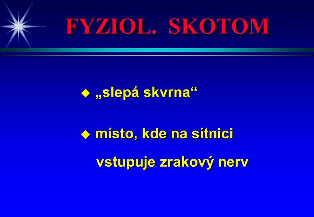 """FYZIOL. SKOTOM """"slepá skvrna místo, kde na sítnici"""