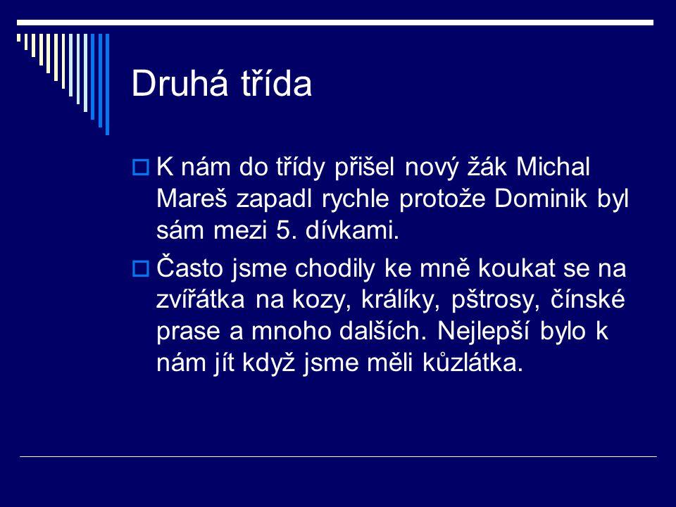 Druhá třída K nám do třídy přišel nový žák Michal Mareš zapadl rychle protože Dominik byl sám mezi 5. dívkami.