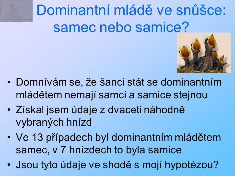 Dominantní mládě ve snůšce: samec nebo samice