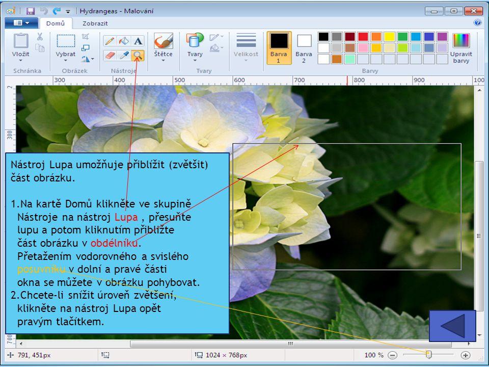 Nástroj Lupa umožňuje přiblížit (zvětšit) část obrázku.