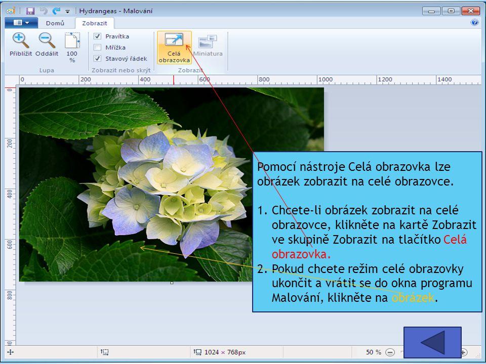 Pomocí nástroje Celá obrazovka lze obrázek zobrazit na celé obrazovce.