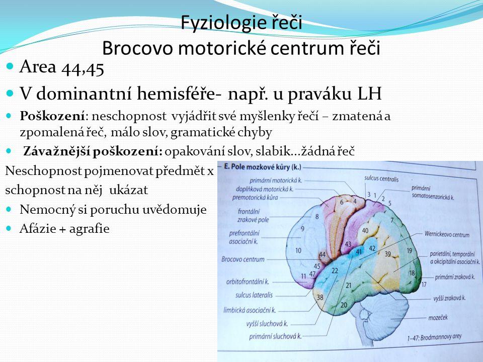 Fyziologie řeči Brocovo motorické centrum řeči
