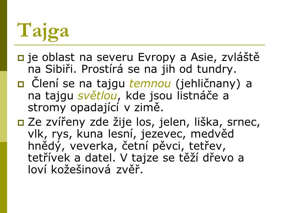 Tajga je oblast na severu Evropy a Asie, zvláště na Sibiři. Prostírá se na jih od tundry.