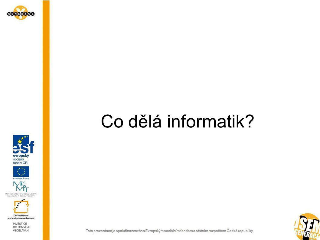 Co dělá informatik