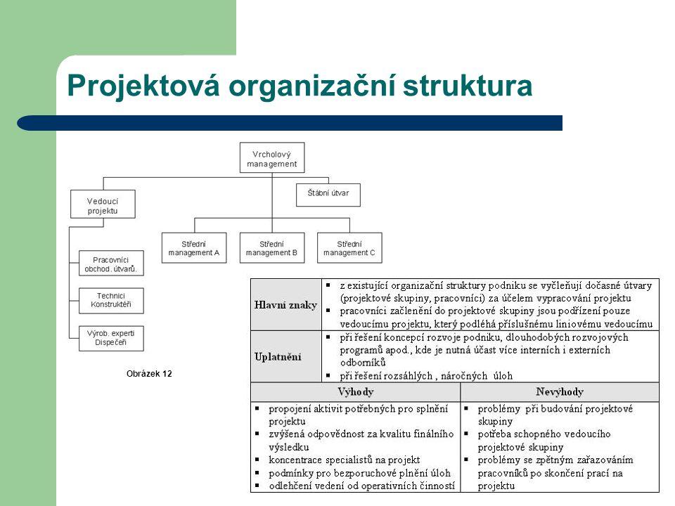 Projektová organizační struktura