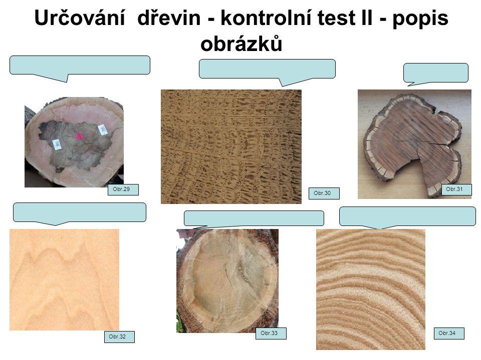 Určování dřevin - kontrolní test II - popis obrázků