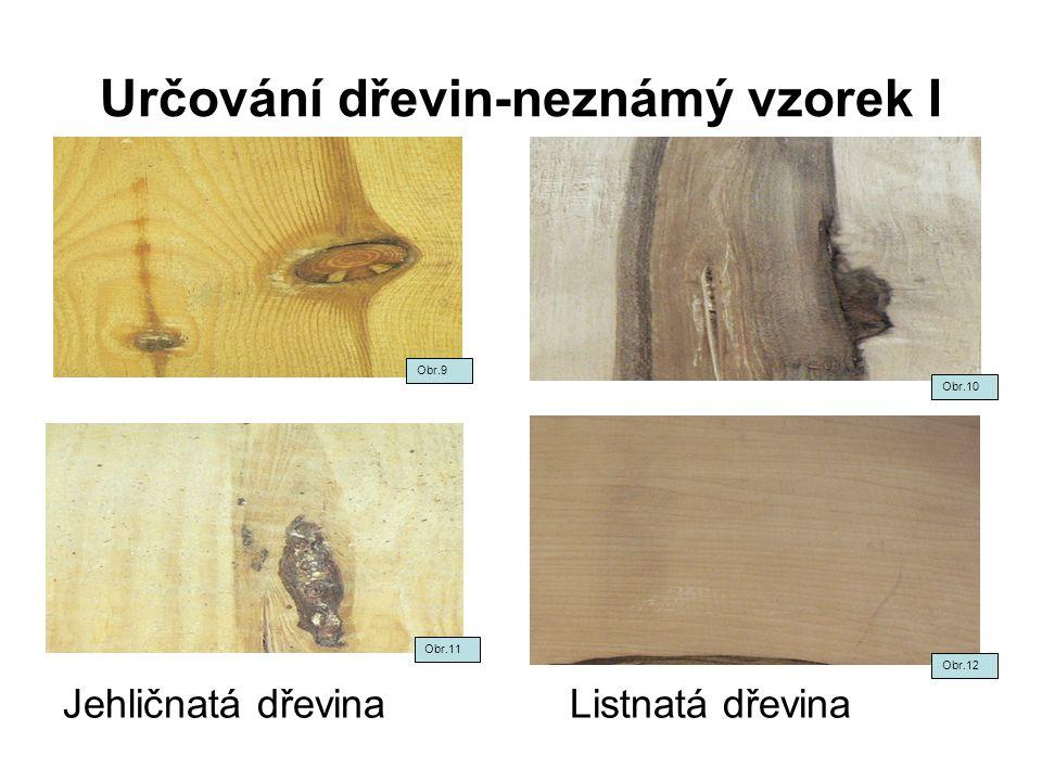 Určování dřevin-neznámý vzorek I