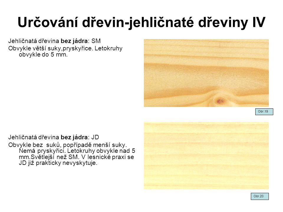 Určování dřevin-jehličnaté dřeviny IV