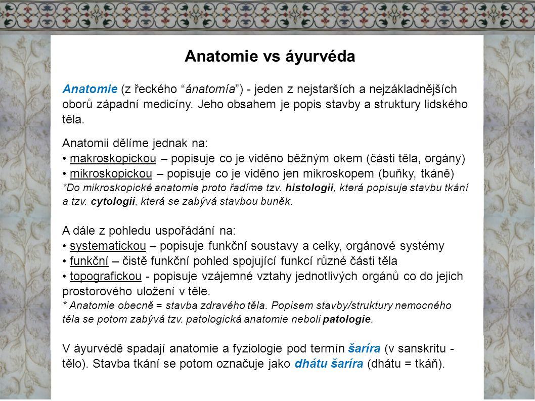 Anatomie vs áyurvéda