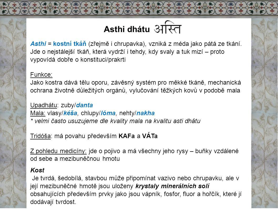 Asthi dhátu