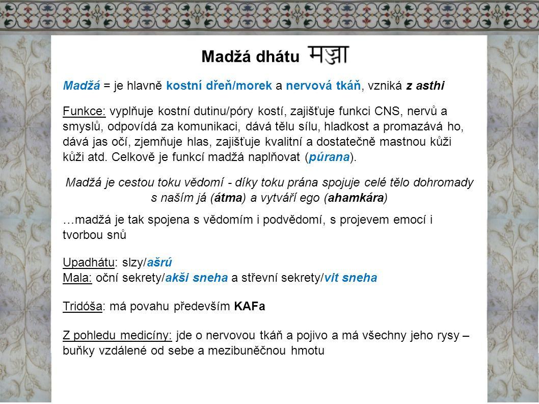 Madžá dhátu Madžá = je hlavně kostní dřeň/morek a nervová tkáň, vzniká z asthi.
