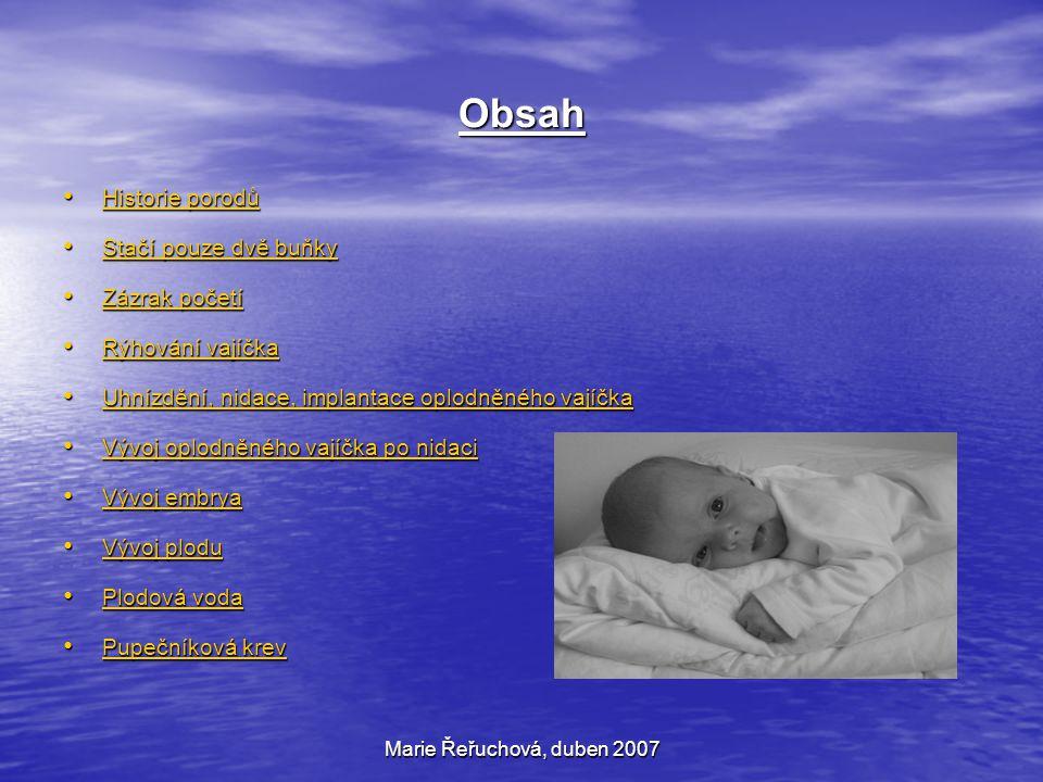 Obsah Historie porodů Stačí pouze dvě buňky Zázrak početí