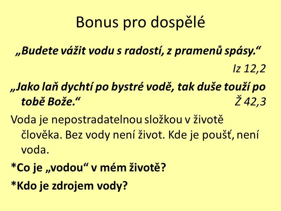 Bonus pro dospělé