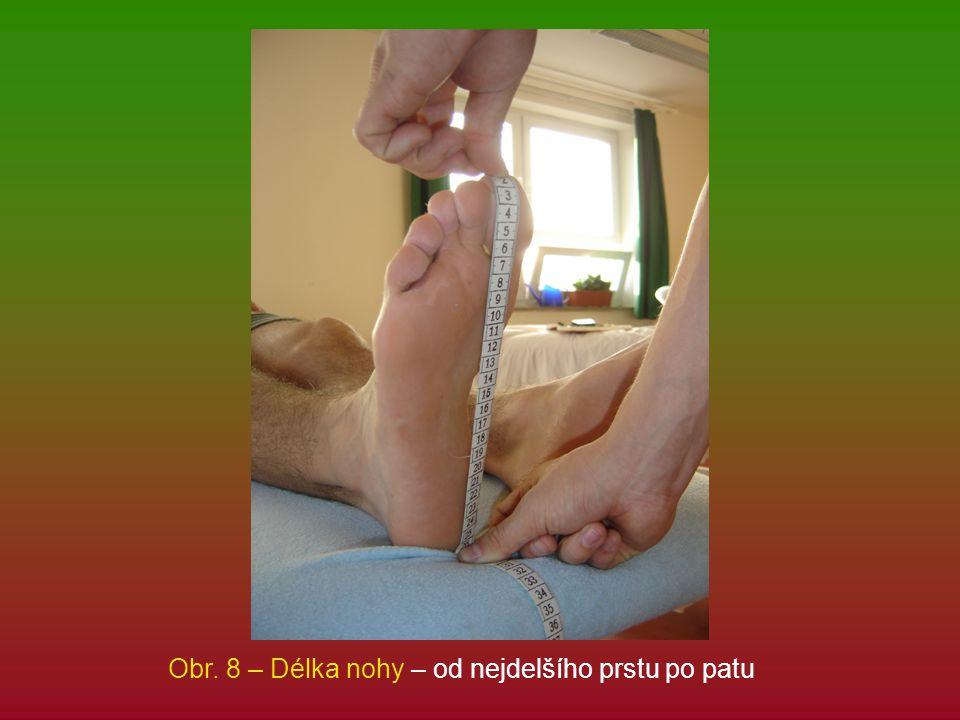 Obr. 8 – Délka nohy – od nejdelšího prstu po patu