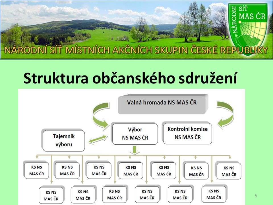 Struktura občanského sdružení