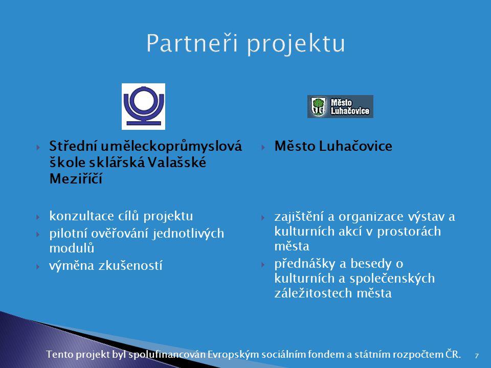 Partneři projektu Střední uměleckoprůmyslová škole sklářská Valašské Meziříčí. konzultace cílů projektu.