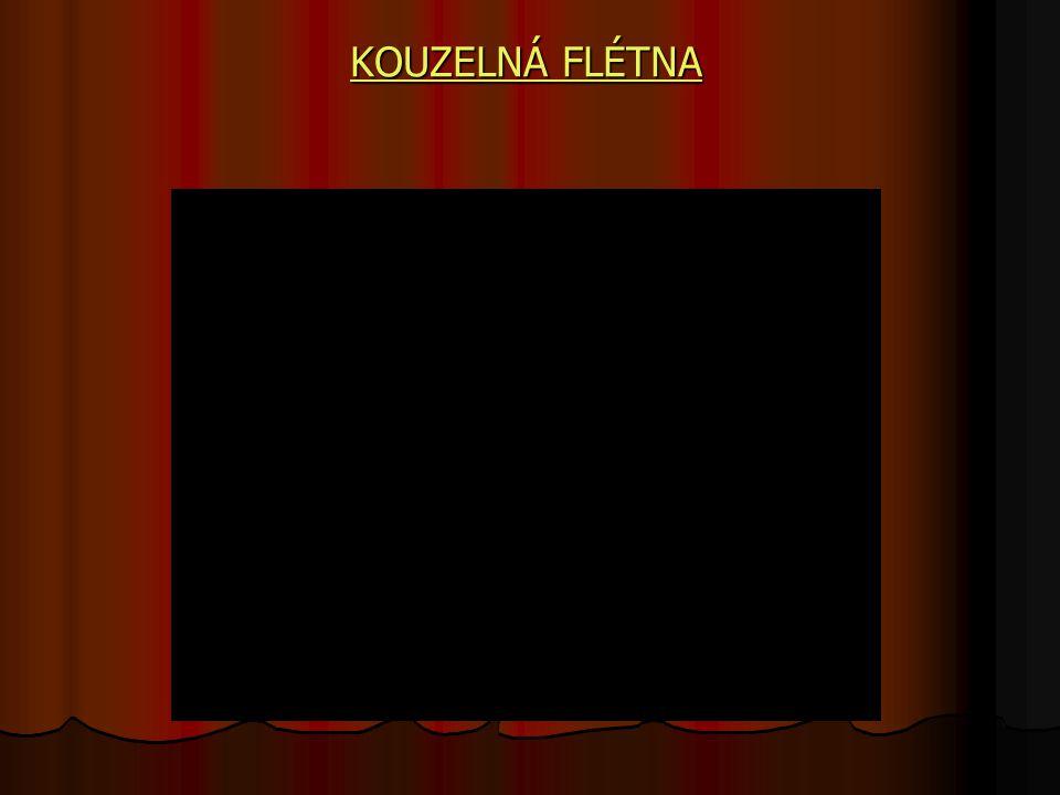 KOUZELNÁ FLÉTNA