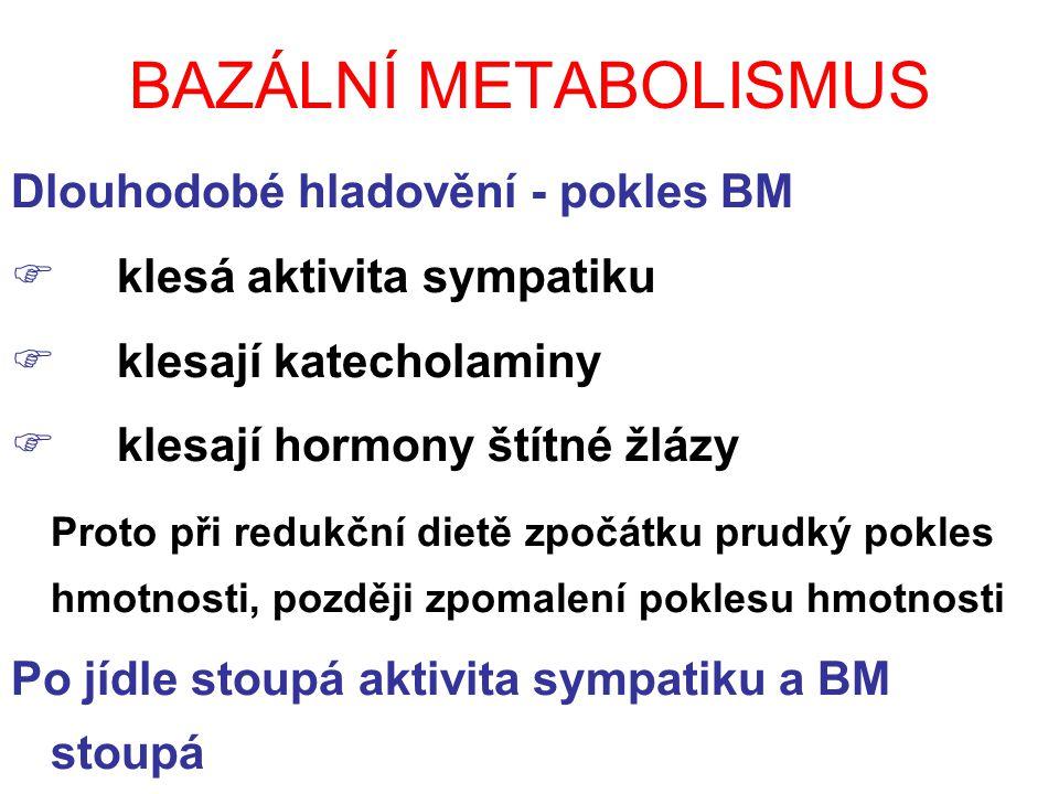 BAZÁLNÍ METABOLISMUS Dlouhodobé hladovění - pokles BM