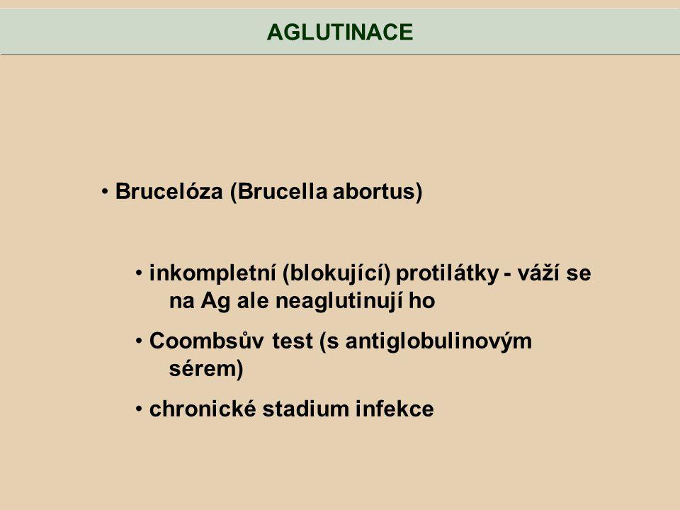AGLUTINACE Brucelóza (Brucella abortus) inkompletní (blokující) protilátky - váží se na Ag ale neaglutinují ho.