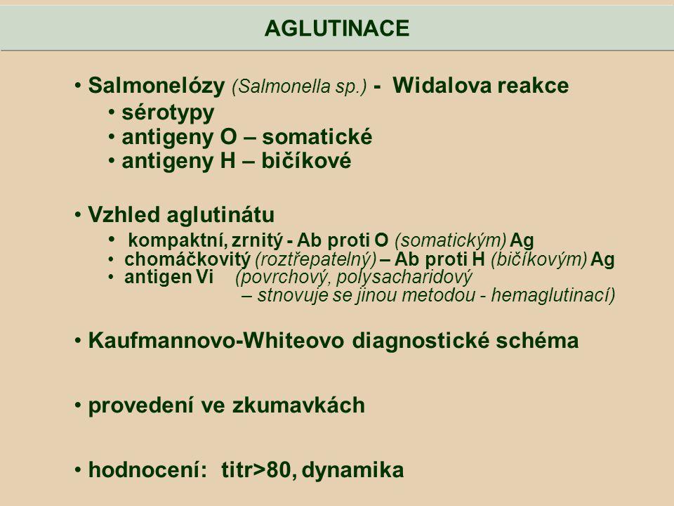 Salmonelózy (Salmonella sp.) - Widalova reakce sérotypy