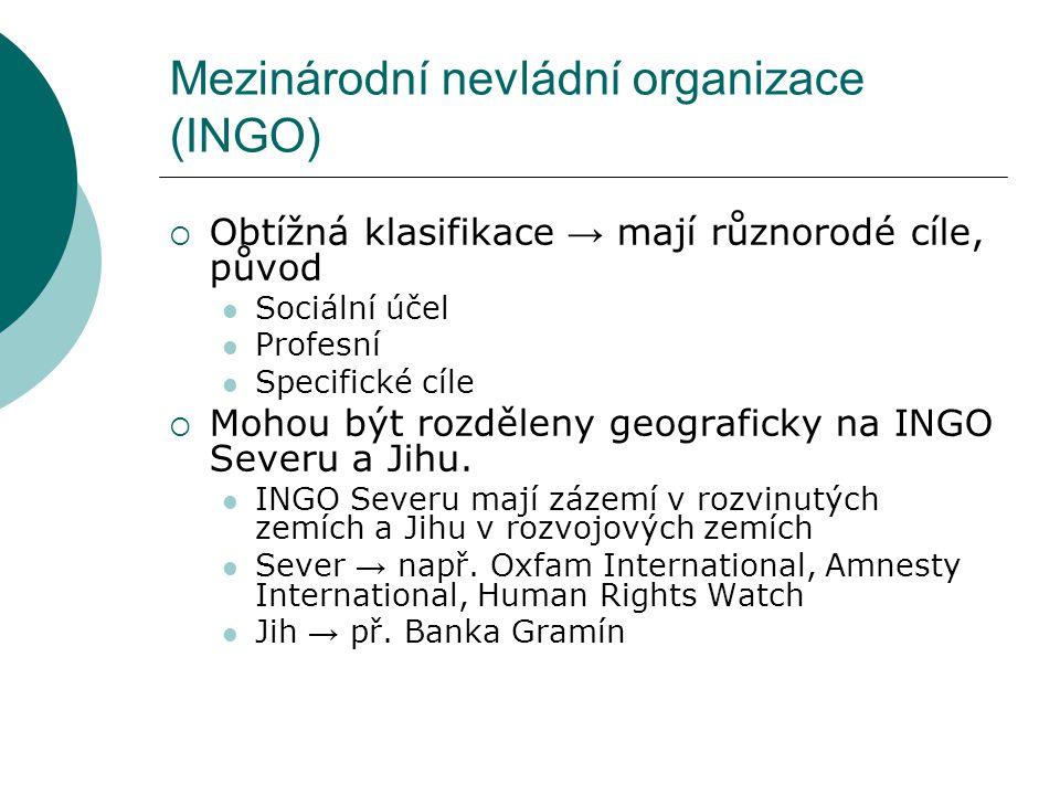 Mezinárodní nevládní organizace (INGO)