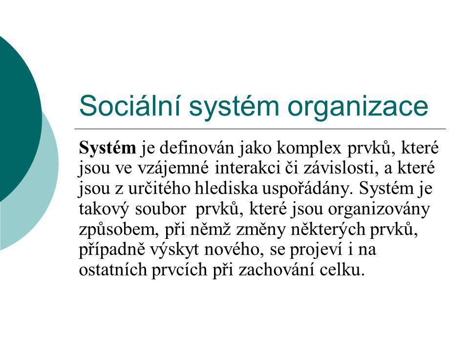 Sociální systém organizace