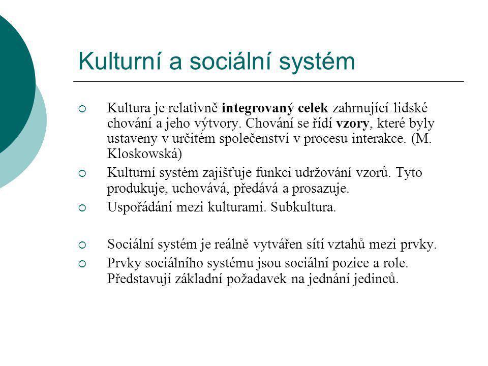 Kulturní a sociální systém