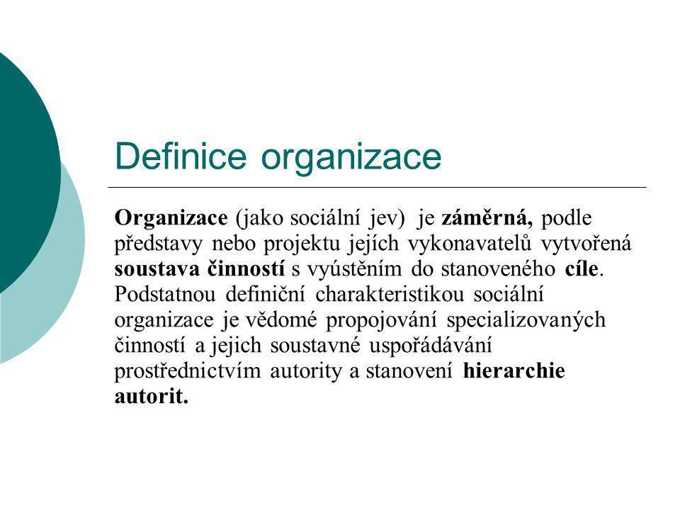Definice organizace