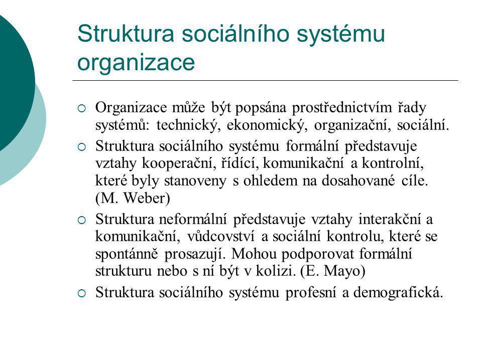 Struktura sociálního systému organizace