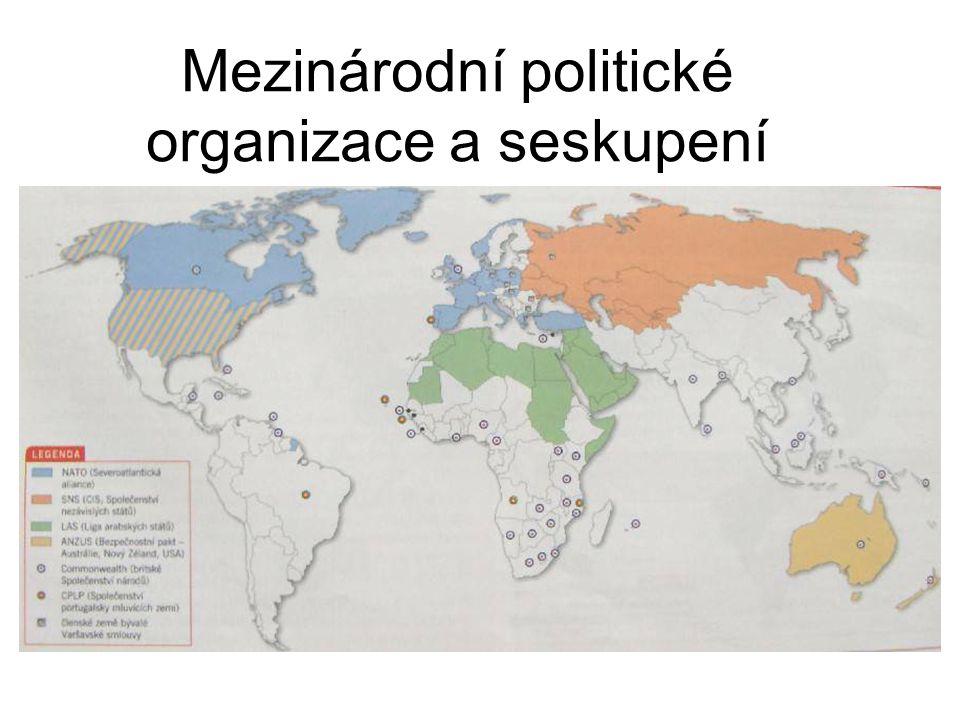 Mezinárodní politické organizace a seskupení