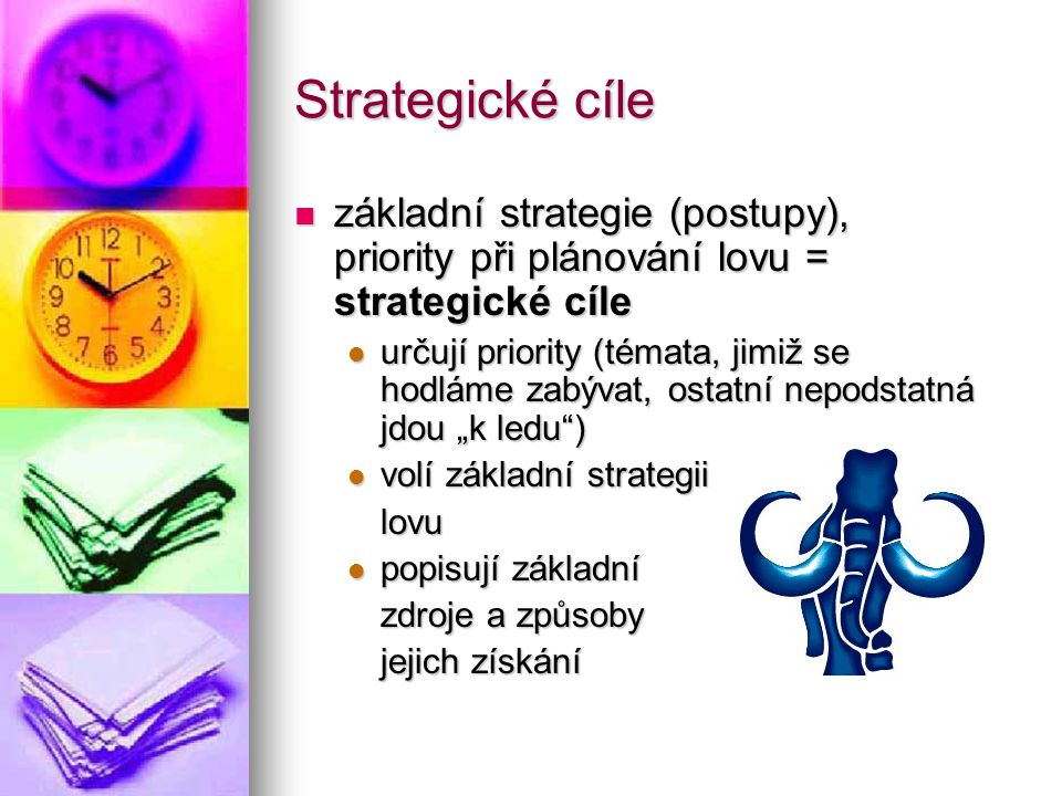Strategické cíle základní strategie (postupy), priority při plánování lovu = strategické cíle.